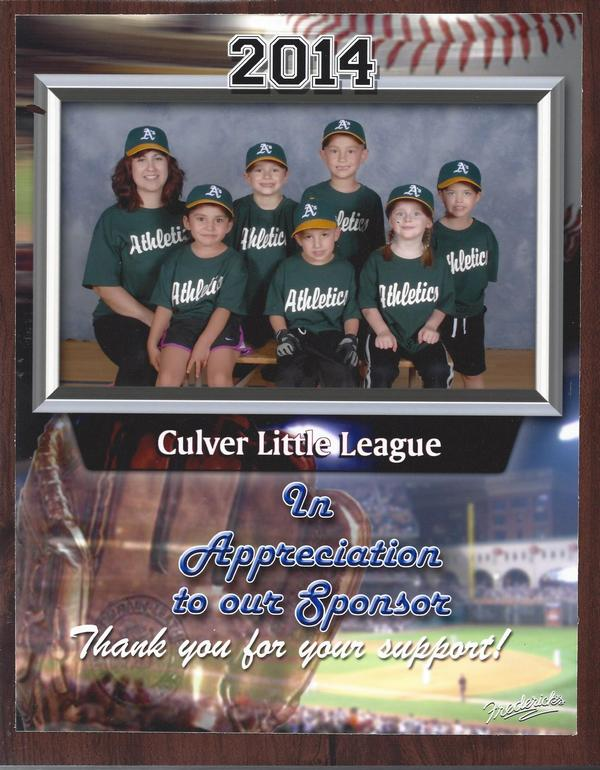 Little League ECC 2014